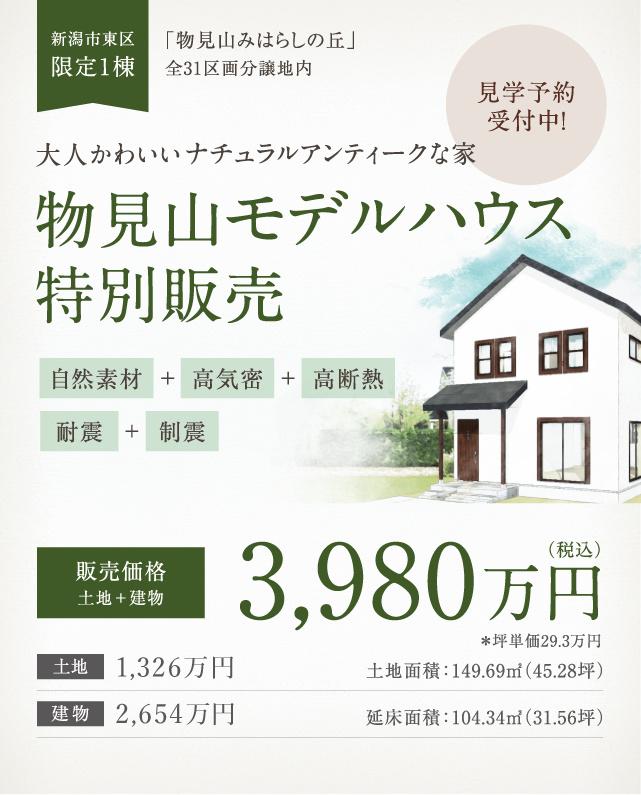 大人かわいいナチュラルアンティークな家 物見山モデルハウス特別販売